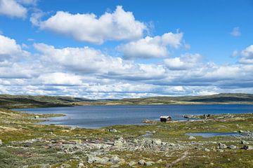 Norway von Annette Sturm