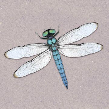 Blauwe libelle van Bianca Wisseloo