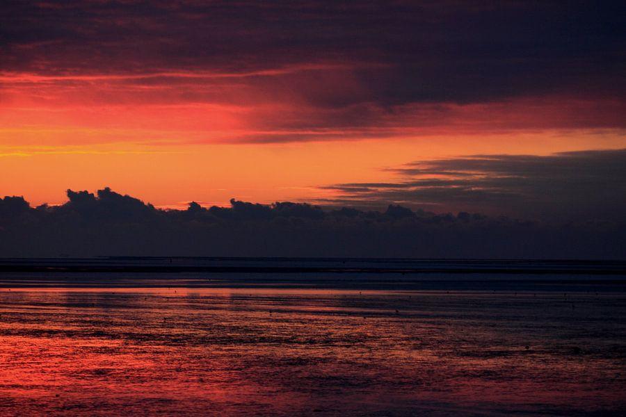 Wad bij zonsondergang