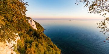 Kreidefelsen beim Königsstuhl auf der Insel Rügen von Werner Dieterich