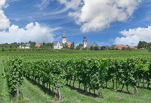 Wijndorp Zell im Zellertal,Donnersbergkreis van Peter Eckert