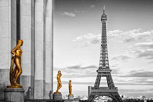 Eiffel Tower PARIS Trocadero