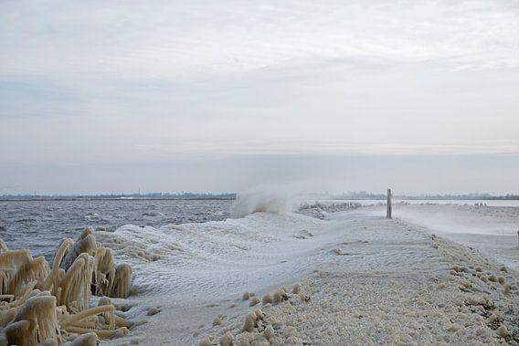 Bevroren water aan de rand van het meer van Barbara Brolsma