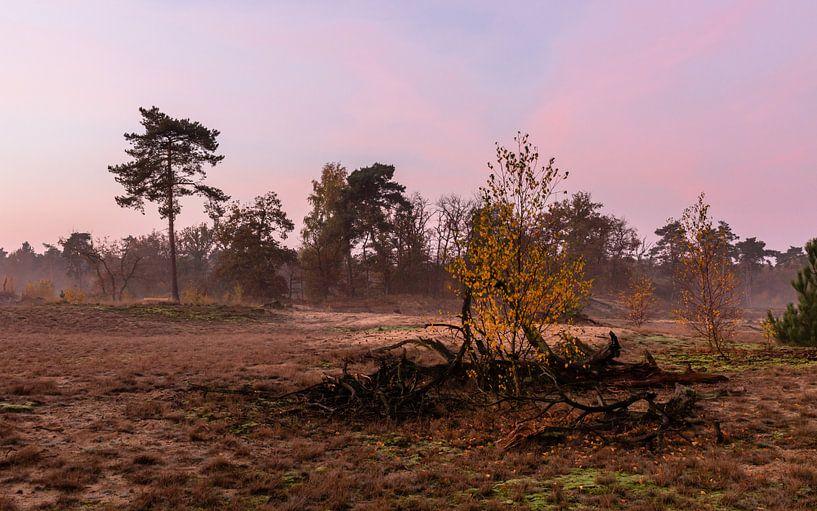 Misty Autumn Twilight  van William Mevissen