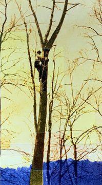 Tree climber von Studio Blomm