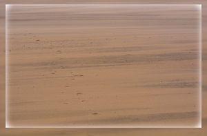 kleur van het strand van