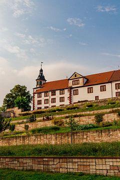 Kasteel Wilhelmsburg in herfstig licht van Oliver Hlavaty