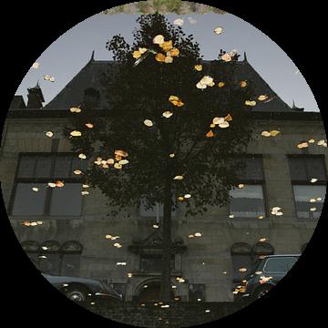 Delft, Museum Lambert van Meerten, spiegeling in water van gracht Oude Delft met herfstblaadjes van Anita Bastienne van den Berg