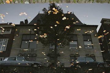 Delft, Museum Lambert van Meerten, spiegeling in water van gracht Oude Delft met herfstblaadjes von Anita Bastienne van den Berg