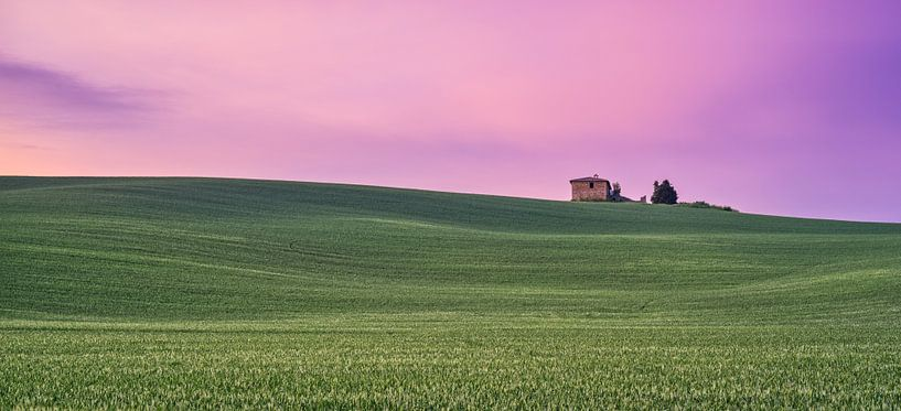 Pink Sunrise Val d'Orcia, Tuscany van Teun Ruijters