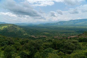Ethiopie: Mago Nationaal park (Jinka) van Maarten Verhees