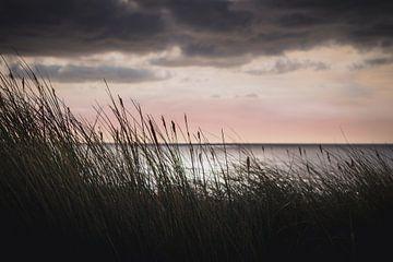 Ocean view van Sandra Hazes