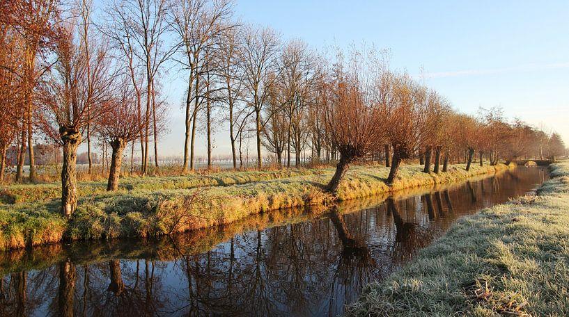 Winterlicht van Yvonne Blokland