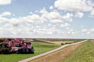 Landschap Friesland met wolkenlucht I Analaloog I Vintage kleurenprint van Floris Trapman