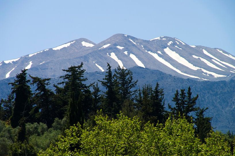 Bos, berg en sneeuw van Miranda van Hulst