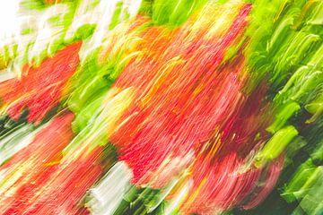 Rote Blumen von Jan Peter Jansen