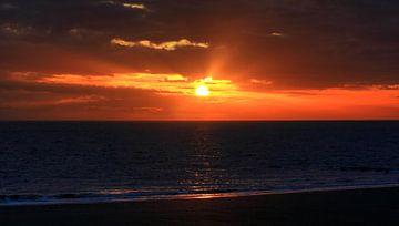 Sonnenuntergang in Zoutelande von MSP Canvas