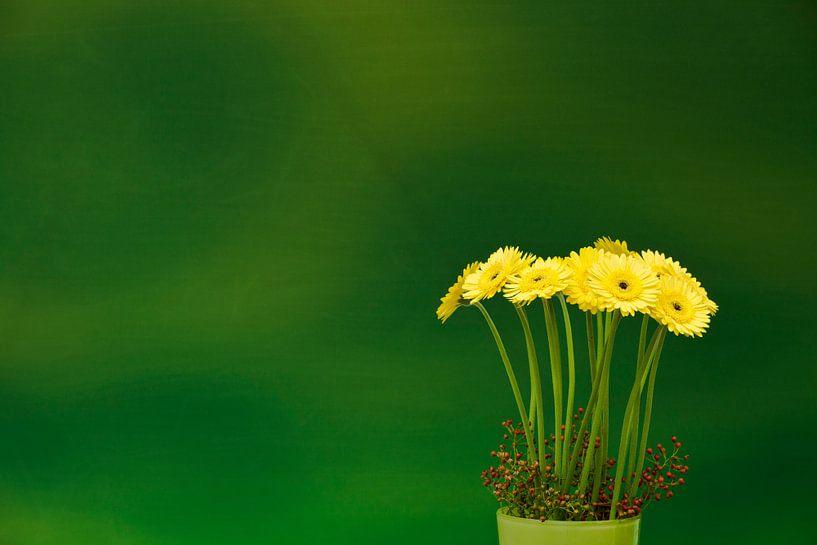 Gerbera  'Yellow' van Greetje van Son