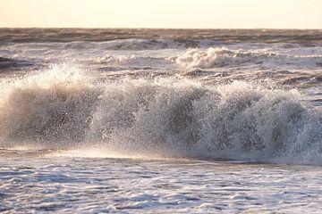 Wellen von Sjoerd van der Hucht