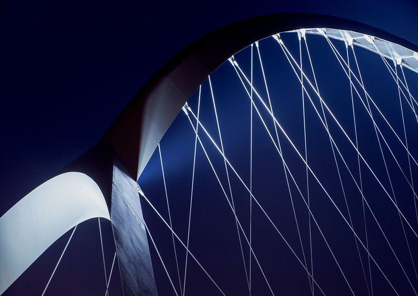 Crossing blue van Maerten Prins