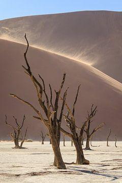 Deadvlei met stuivende duinen van Remco Donners