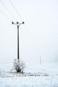 Mast von einer Überlandstromleitung an einem grauen, nebligen Wintertag mit Raureif und Schnee, Kopi von Maren Winter