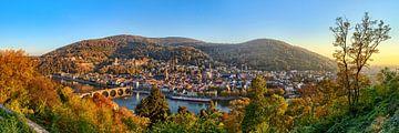 Heidelberg Panorama van Uwe Ulrich Grün