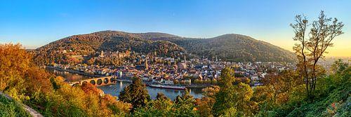 Heidelberg Panorama von Uwe Ulrich Grün