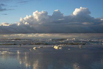 Schöne Wolken und Schaumköpfe  von Barbara Brolsma