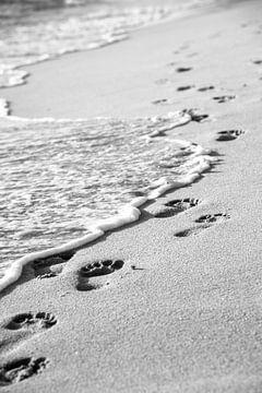 Fußabdrücke im Sand an der Küste von Jan Fritz
