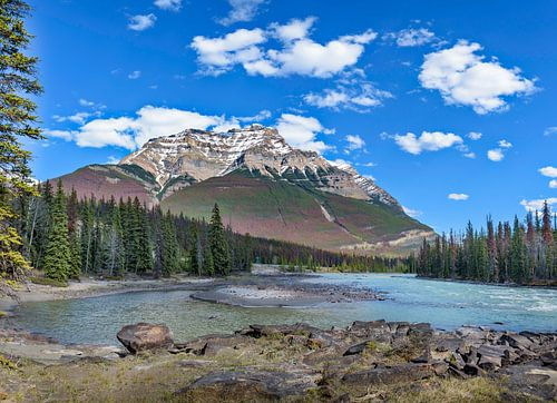 Bij de Athabasca watervallen, Canada