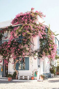 Wit Huis Met Bloemen Op Kreta von Henrike Schenk