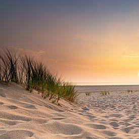 Strand von Jan Koppelaar