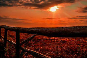 Zonsondergang op Texel van Liberty Ragazza Biesma