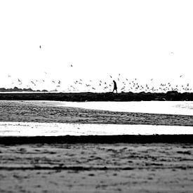 Wandeling op het strand sur Arti Elvi
