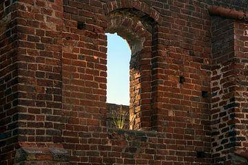 leeg raam met een plukje gras in een stenen muur van de kloosterruïne in Bad Doberan, Noord-Duitslan van Maren Winter