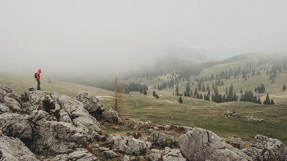 Mist trekt over Velika Planina van Paulien van der Werf