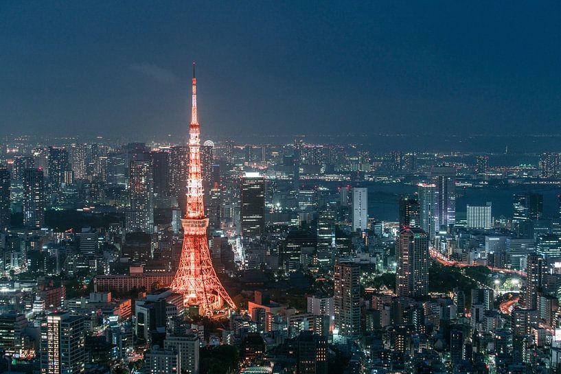 De toren van Tokio (deel 2) van Maarten Mensink