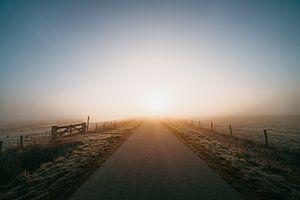 Middelburg : un lever de soleil froid 3 sur Andy Troy