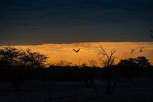 Epischer Sonnenuntergang