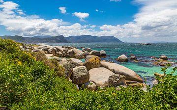 Valsbaai, Zuid Afrika van Peter Leenen