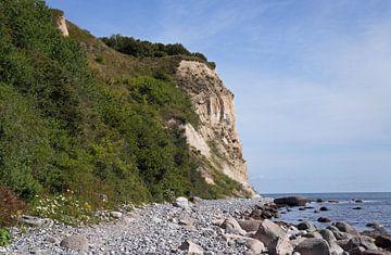 Kreidefelsen - Insel Rügen von Babetts Bildergalerie