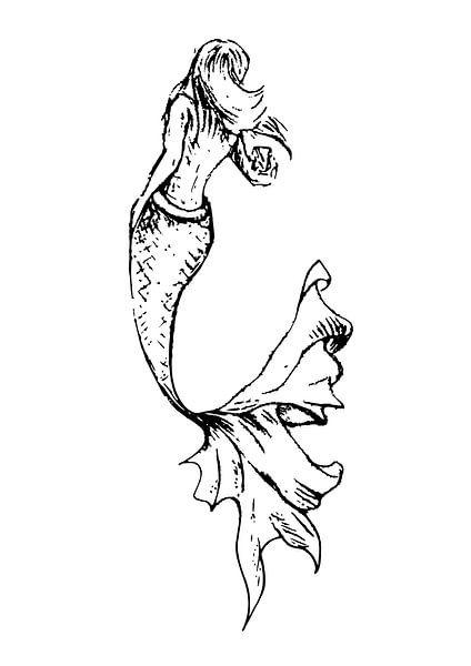 Illustration au stylo à encre d'une sirène avec une queue gracieuse sur Emiel de Lange