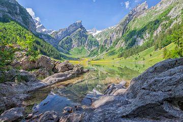 Seealpsee Zwitserland van Cor de Bruijn