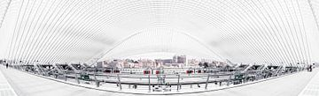Panorama der modernen Architektur des Lütticher Bahnhofs