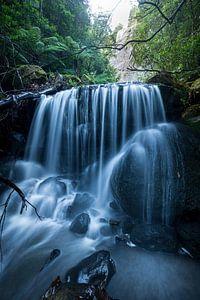 Blue Mountains Jungle Gorge Waterval van Jiri Viehmann