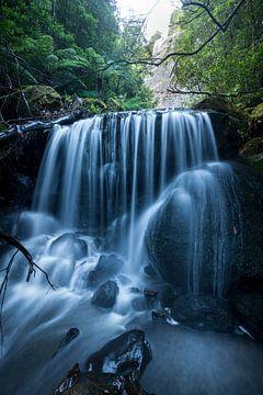 Blue Mountains Dschungel Schlucht Wasserfall von Jiri Viehmann