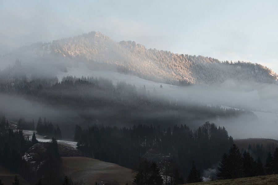 mistige bergen