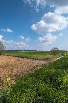 Hollandse molen von Moetwil en van Dijk - Fotografie