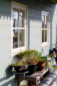 Nachmittagsglühen auf dem blauen Haus von Artisticcreationsbyramona